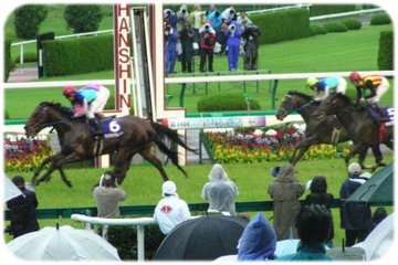 2007年宝塚記念